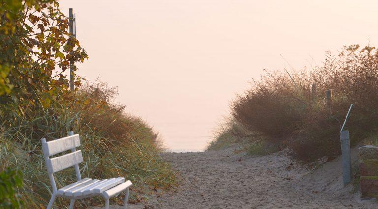 Strand & Boddenlandschaft